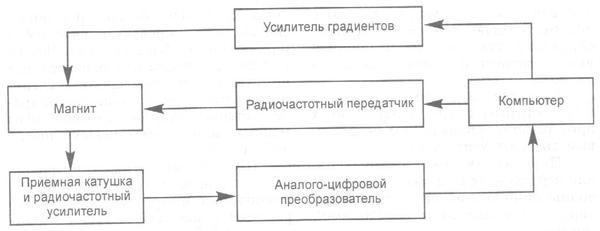Принципиальная схема МРТ